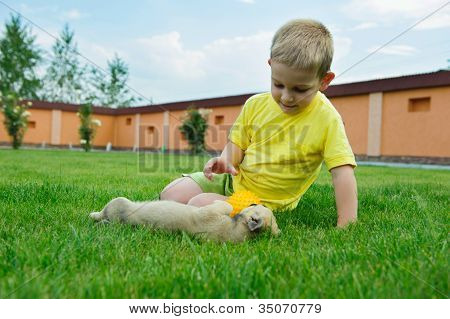 Little Boy Playing With His Cute Dog