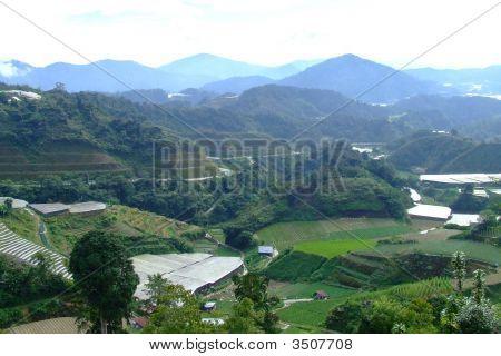 Cameron Highlands Countryside Scene, Malaysia