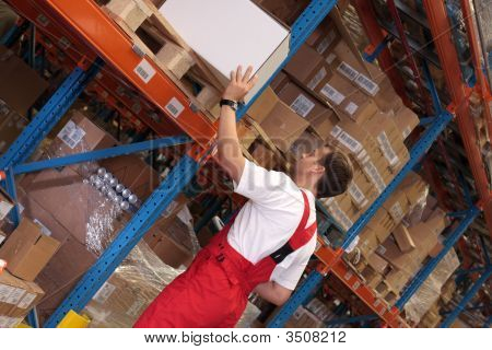 Worker In A Storeroom