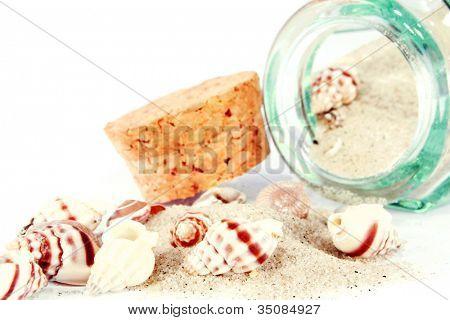 Sea shells in a jar