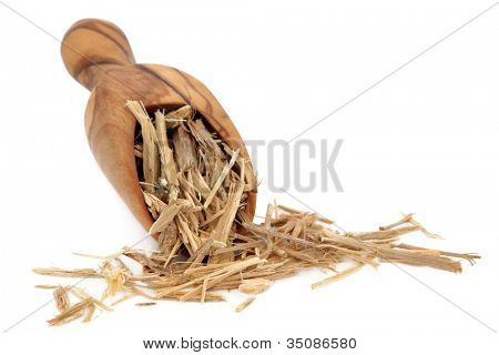 Ginseng root herb in an olive wood scoop over white background.