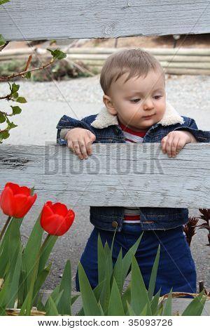 Bebé jardín
