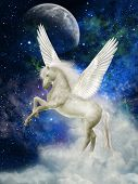 stock photo of pegasus  - Pegasus in the sky with big clouds - JPG