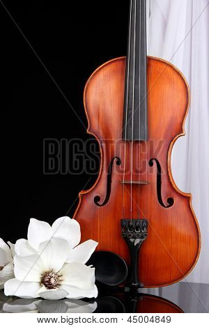 Classical violin on curtain background