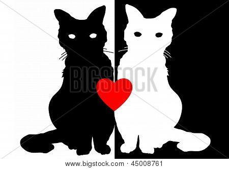 Yin Yang Cat Illustration