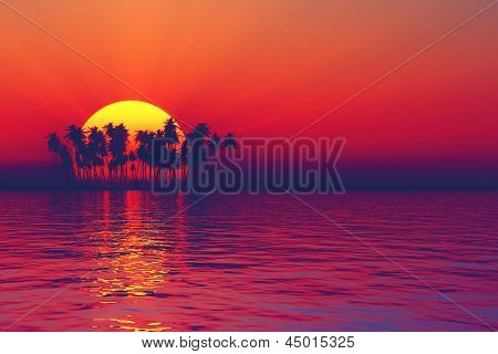 Silhouette Of Sunset Palms