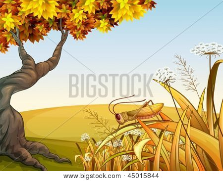 Illustration of a grasshopper near the tree