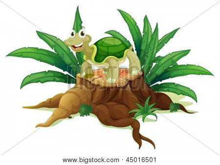 Illustration of a tree with a turtle on a white background