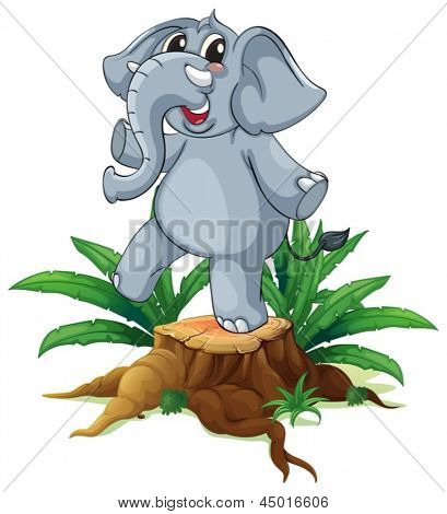 Illustration of a tree with a young gray elephant on a white background