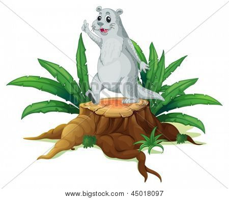Illustration of a sealion above a wood on a white background