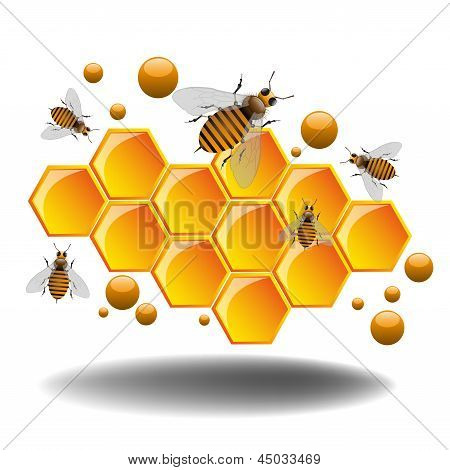 Producing honey