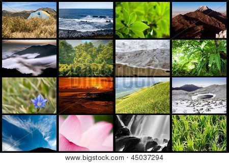 Collection of nature landscape on tv wall.