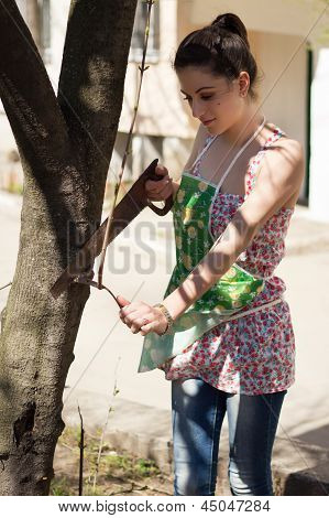 The Girl Saws A Tree Branch