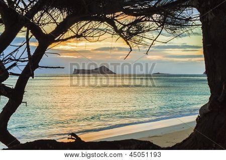 Waimanalo Sunrise 1