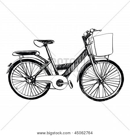 Bicycle - Sketch Illustration Hand Drawn.