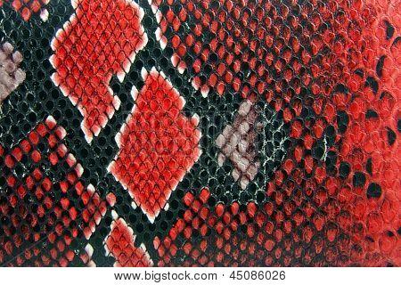 Snake huid achtergrond