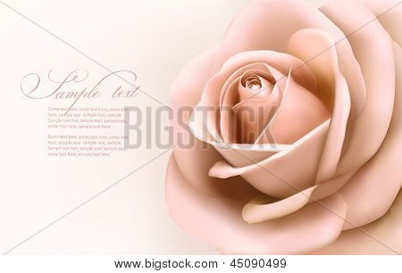 Vintage background with beautiful pink rose. Vector illustration.