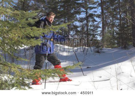 Skier In Taiga