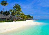 picture of tropical island  - Beach bungalows on a tropical island travel background - JPG