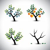 Abstract Tree In Spring, Summer, Autumn & Winter-vector Graphic.