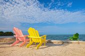 image of florida-orange  - Summer scene with colorful lounge chairs on a tropical beach in Florida with palm tree and blue sky - JPG