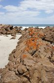 Stokes Bay, Kangaroo Island, South Australia