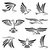 stock photo of hawks  - eagle symbols - JPG