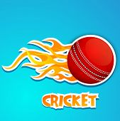 pic of cricket shots  - Cricket ball in fire with text Cricket on blue background - JPG