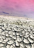 picture of polution  - Dry cracked earth near poluted lifeless lake - JPG