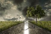 stock photo of reunited  - A deep track divides the earth a tree reunites them - JPG