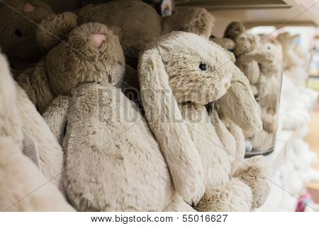 Cute Stuffed Animals On Display