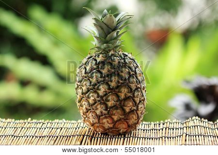 Sweet Fresh Pineapple