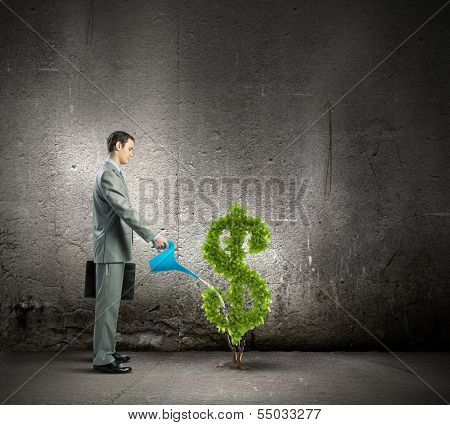 Image of businessman watering money tree inshape of dollar symbol