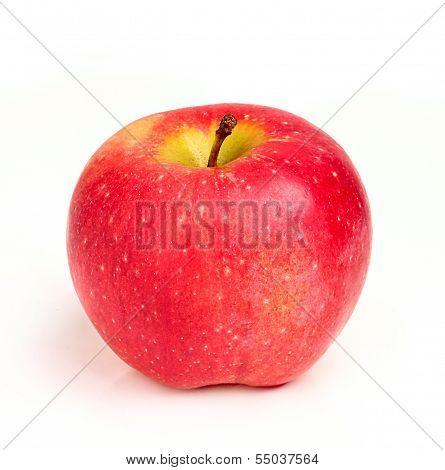 Moldovan Red Apple Closeup.