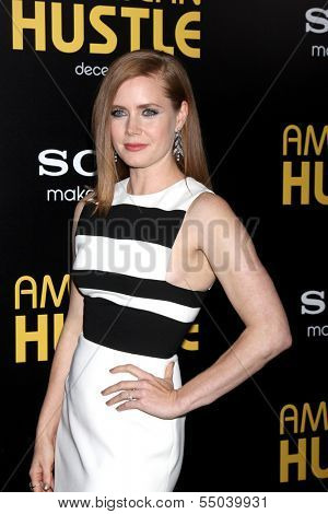 LOS ANGELES - DEC 3:  Amy Adams at the