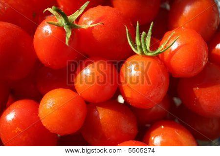 The Tomato Bowl