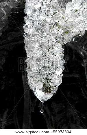 icicle with a drop water