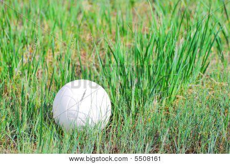 Football Ball On The Grass In Sunlight