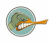 picture of angry bird  - angry cartoon duck - JPG