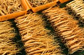 picture of ginseng  - Ginseng sell in Korean market - JPG
