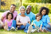 stock photo of granddaughter  - Multi Generation African American Family Sitting In Garden - JPG
