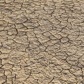 stock photo of loam  - loam in a saline basin dried and cracked - JPG