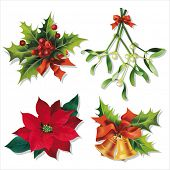 stock photo of poinsettias  - Christmas traditional symbols isolated on white - JPG