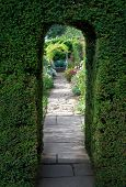 image of english cottage garden  - Pretty flagstone path through clipped yew archway towards a bench with flowers - JPG
