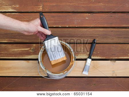 Dipping Paint Brush Into A Can Of Wood Stain