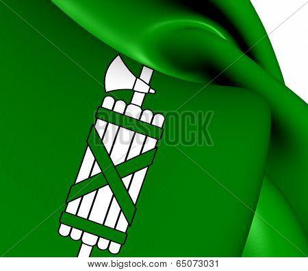 Flag Of St. Gallen Canton
