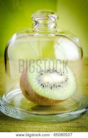 Kiwi Half Under The Glass Dome