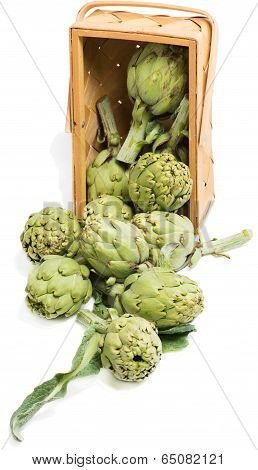 Artichokes  In A Wooden Box Is Scattered