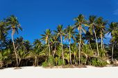 stock photo of boracay  - White sand beach on Boracay Island Philippines - JPG