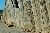 stock photo of log fence  - A short log fence along a sidewalk.